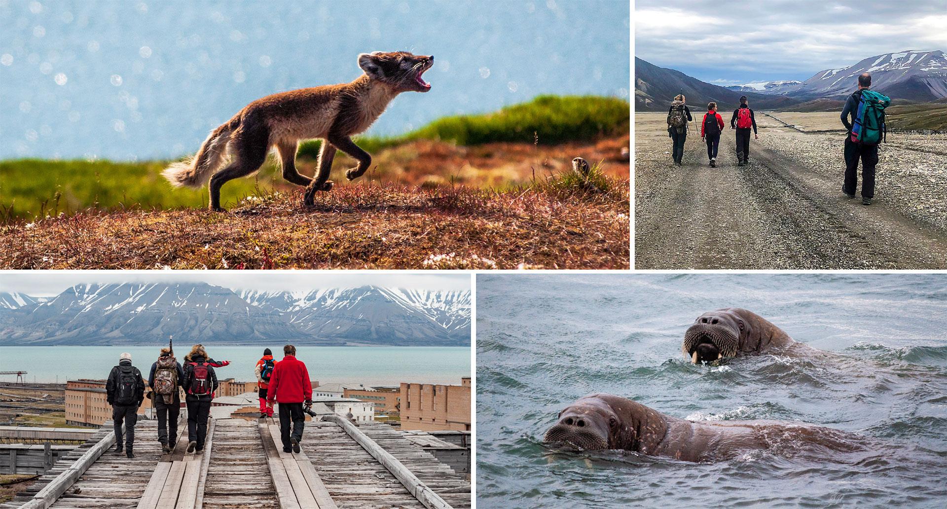 POLAR-SAILS_2019_Croisiere_Svalbard_v181101_FR-5