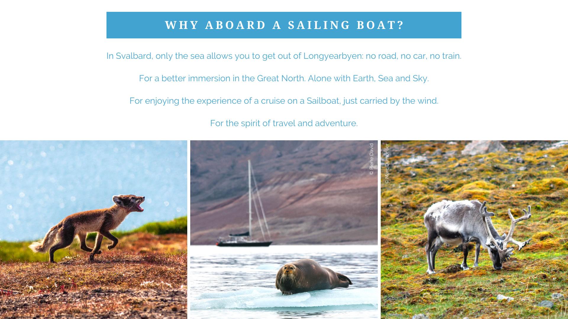 SvalbardEn2020-04